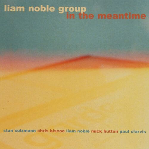 Liam Noble 'In the Meantime'